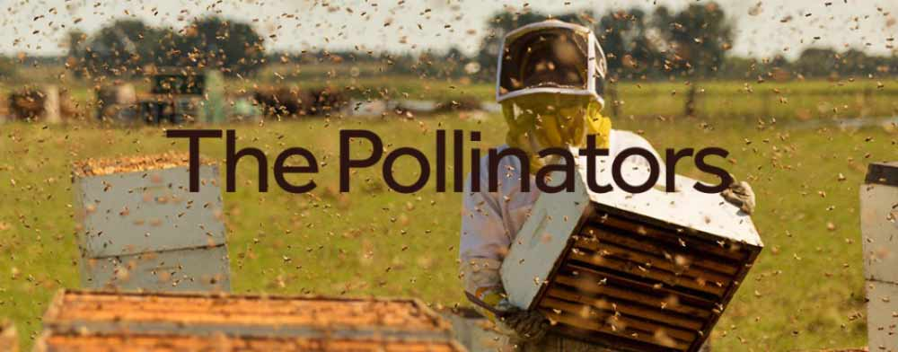 The Pollinators Documentary a Revolutionary Film