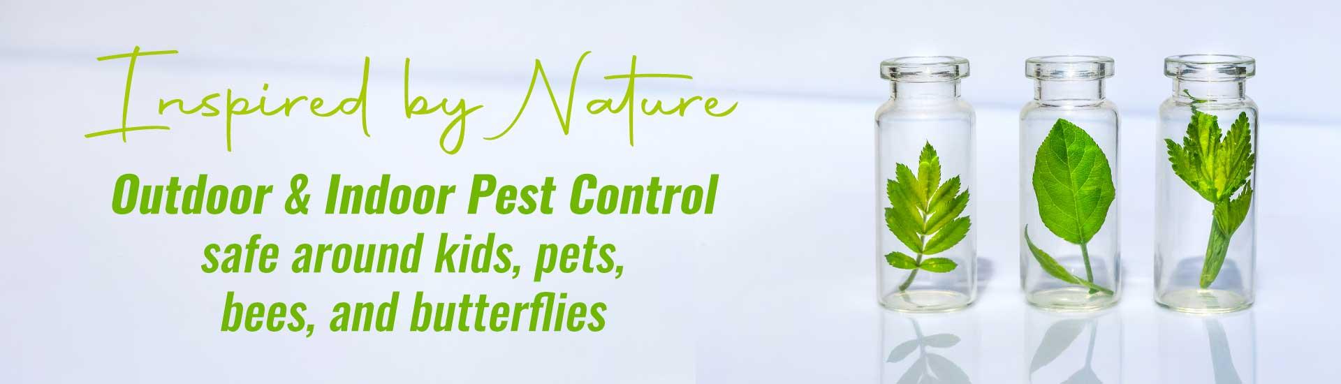 Non-Pesticide Pest Control Service Phoenix